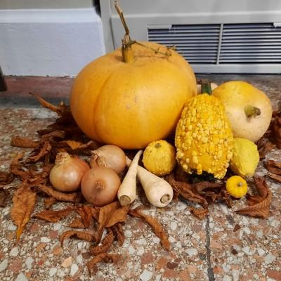 Harvest Thanksgiving 2021 - Thank you! - 20211016_165453_ff8efa129540778df225d7bc8d40ceae